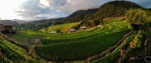 Ban Pa Bong Piang: Beautiful Terraced Rice Fields near Chiang Mai