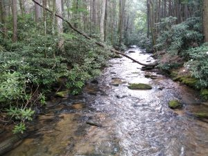 Appalachian Trail – Day 2 – Mile 8.1 to 14.3