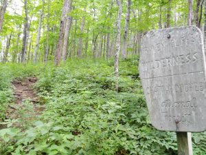 Appalachian Trail: Day 6 – Mile 38 to 42.8
