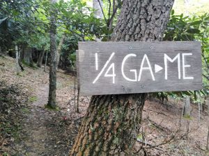 Appalachian Trail: Day 61 – Mile 534.1 to 560.4