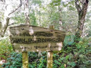 Appalachian Trail: Day 81 – Mile 767.2 to 779.6