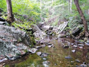 Appalachian Trail: Day 85 – Mile 823.1 to 841.4