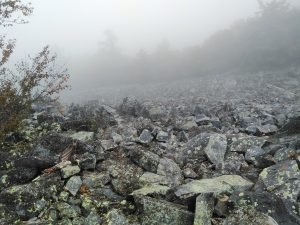 Appalachian Trail: Day 91 – Mile 885 to 906.4