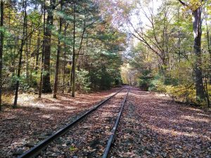 Appalachian Trail: Day 107 – Mile 1107.1 to 1115.9