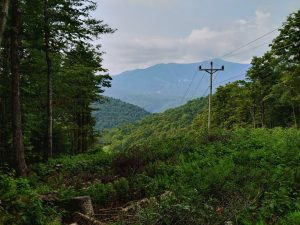 Appalachian Trail 2021 – Day 176 – To the Look Out Tower