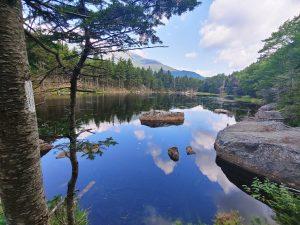 White Mountains | Wildcats and Carter Notch Hut | Appalachian Trail 2021 | Day 194